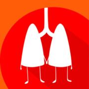 don d'organes débat